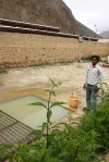 disgusting green water supply in northern India