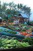 Veggie Market Morning