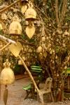 Buddhist Bell Tree